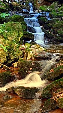 Der mächtige Wasserfall | Landschaftsfotografie von Patrick Jobst