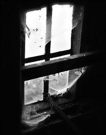 Memories XIV von joespics