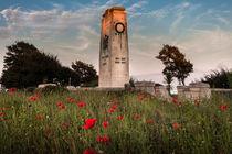 Swansea cenotaph von Leighton Collins