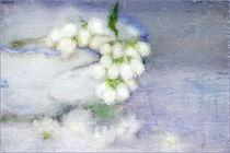 Arrangement von Annie Snel - van der Klok
