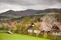 Spring in Babia Gora massif view afar from Zawoja village by Arletta Cwalina
