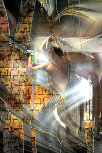 Ritter des Lichts by Alois Reiss