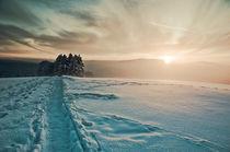 Winterlandschaft im Harz von Katrin Raabe
