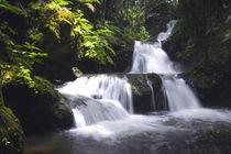Traum-Wasserfall von Bruno Schmidiger