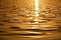 Goldenes Wasser (Lac Leman) von Katrin Raabe