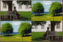 """Viererbild """"Baum und Schatten"""" von lisa-glueck"""