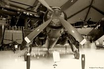 AF-2S Guardian von Dan Richards
