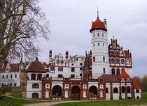Schloss Basedow, chateau, castle, castillo von Sabine Radtke