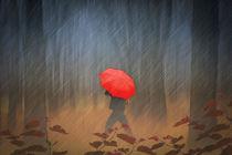 When-the-rain-comes-2