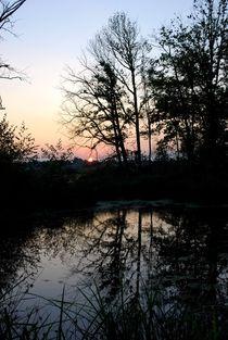 De Wittsee im Abendlicht (1) by megina-art