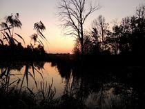De Wittsee im Abendlicht (3) von megina-art