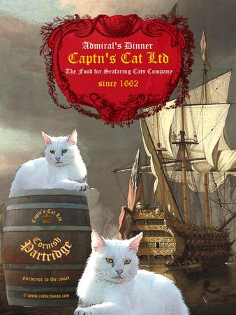 Captncatsposter12