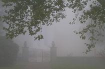 Das Tor im Herbst von Bernhard Kaiser