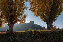 Burg Stahleck 7 von Erhard Hess