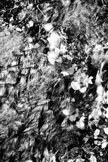 Strömungen by Bastian  Kienitz