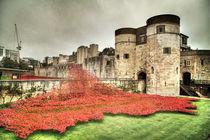 Poppies at the Tower  von Martin Williams