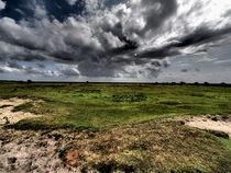 Dünenlandschaft Norderney by smk