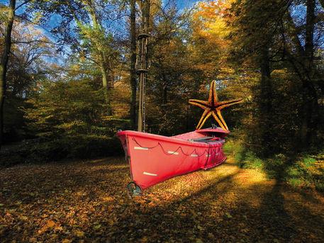 Starfishandships