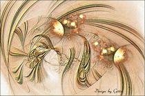 Apophysis 14 by bilddesign-by-gitta
