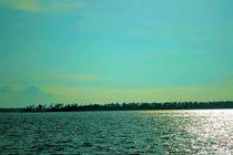 Bay at Sunset by Dan Richards