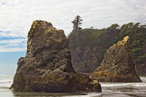 Granite Stacks Olympic Peninsula von Peter J. Sucy