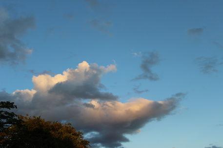 Izai-amorim-sky-over-liberty-farm-number-02