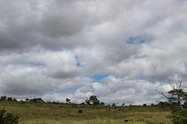 Sky Over Liberty Farm #07 by Izai Amorim