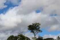 Sky Over Liberty Farm #14 by Izai Amorim