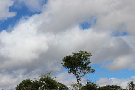 Izai-amorim-sky-over-liberty-farm-number-14