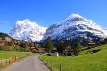 Grindelwald von Gerhard Albicker