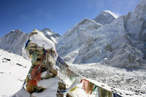 Mount Everest by Gerhard Albicker