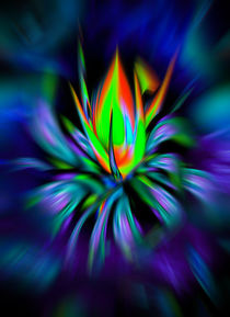 Blütenträume 28 by Walter Zettl