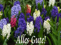 Alles Gute! by gscheffbuch