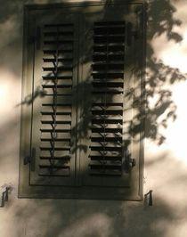 Schattenspiele  von Rena Rady