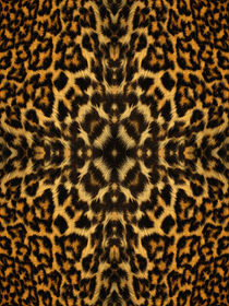 Kaleidoscope Fur 4 by Steve Ball