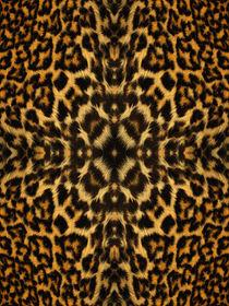 Animal-fur-pattern-4
