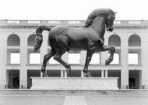 Leo's Horse by Valentino Visentini