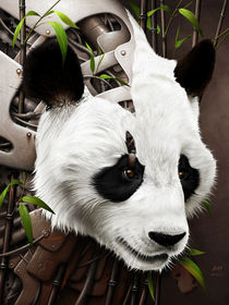 Wild 2 - The Panda by Benjamin FRIESS