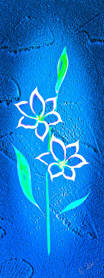 Blütenträume 31 von Walter Zettl
