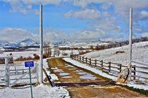 Letzter Schnee US Border von Ronald Klötzer