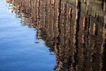 Wasserspiegelung von ta-views