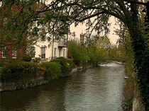 Avon river, Salisbury by dip