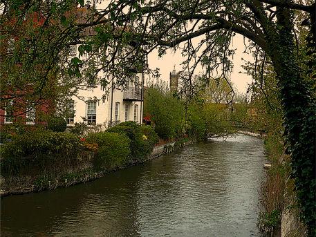 Avon-river-salisbury