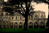 Salisbury Cathedral Cloisters by dip