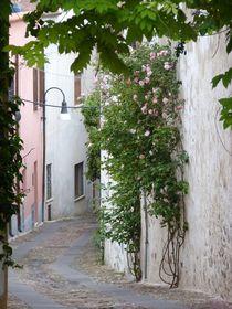 strada by Corinna Schumann