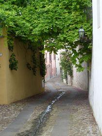 street by Corinna Schumann