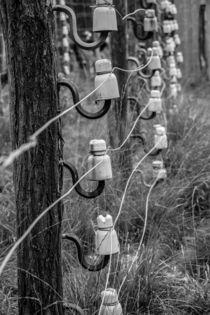 Voltage by Martin Beerens