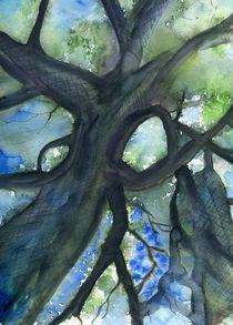 Tree crown by Christina Rahm
