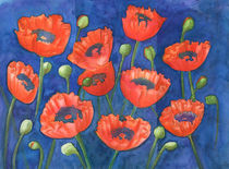 Red poppies by Christina Rahm