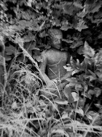 buddhas garten von studio111